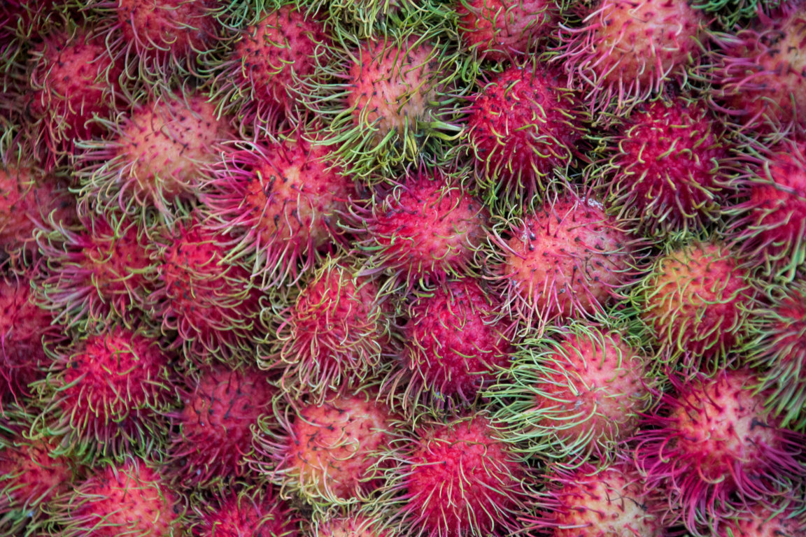 Rambutan auf einem Markt in Chiang Mai, Thailand