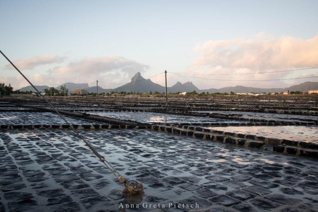 Salinen_Tamarin_Mauritius (FILEminimizer)